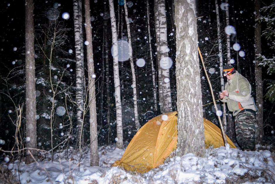 Знакомства на ночь в лесу знакомства для секса в северске томской области на