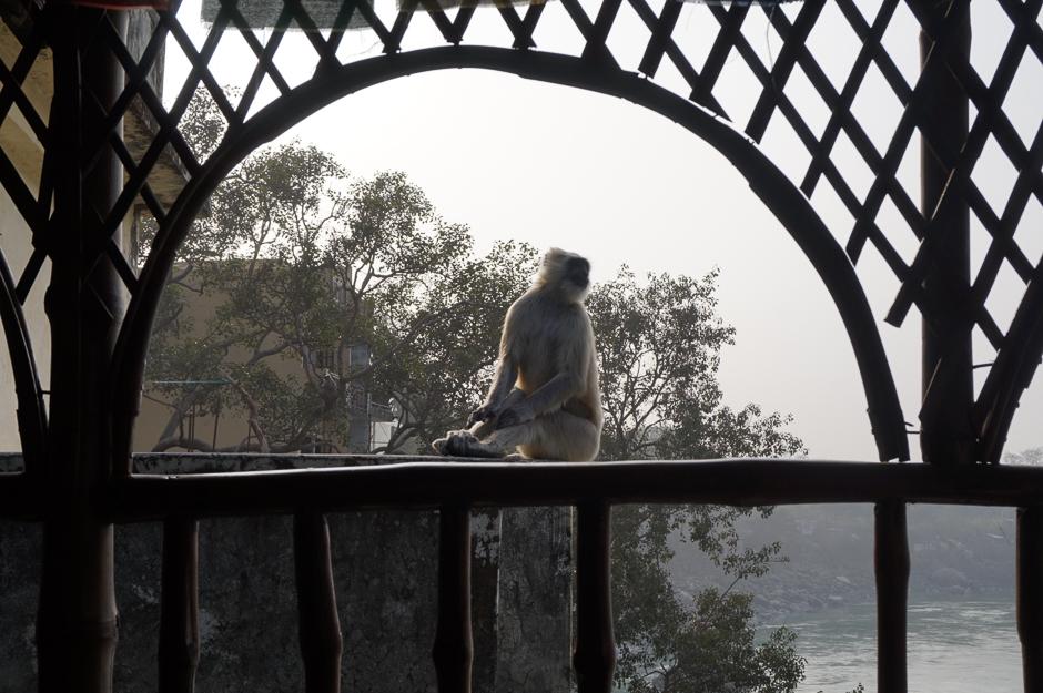 Едем в Северную Индию В дороге - сайт о путешествиях и приключениях