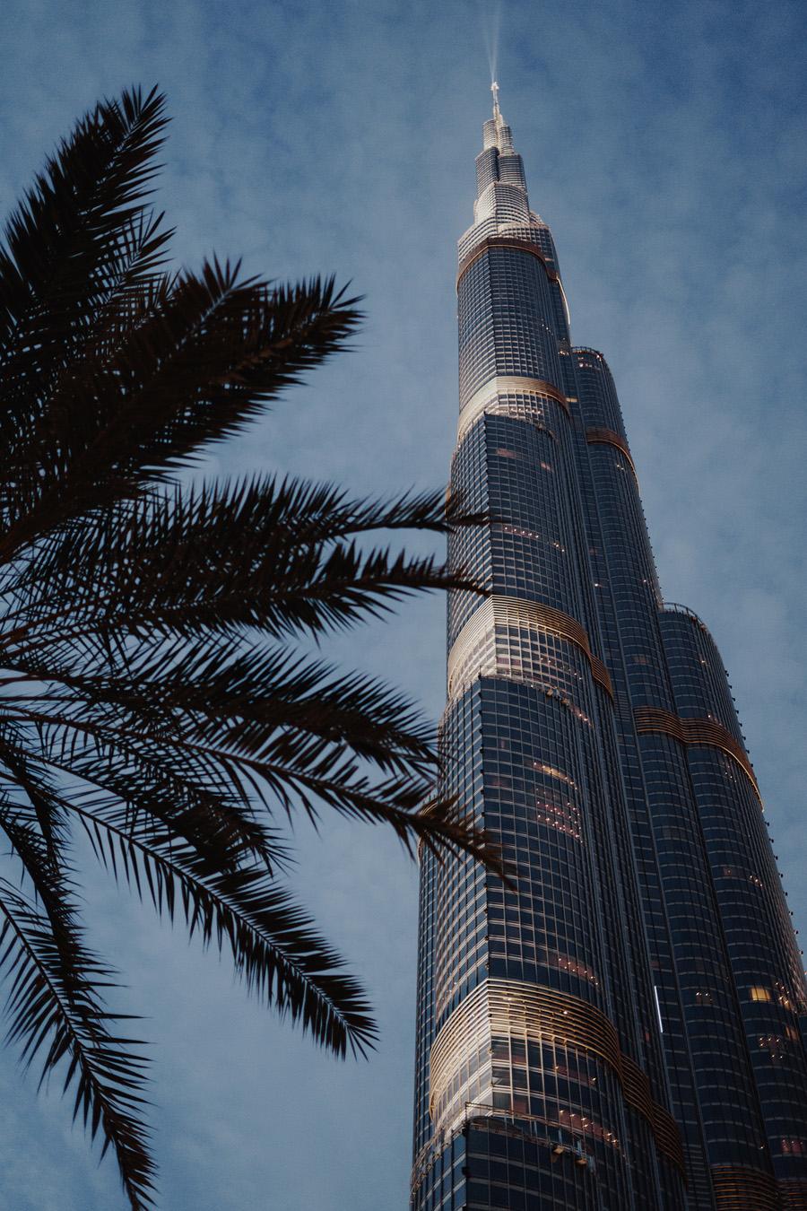 Едем в Дубай Едем в Дубай DSC06284