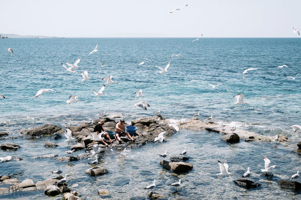 Почувствовать Грецию. Почувствовать Грецию. u3QDuqSsSV4