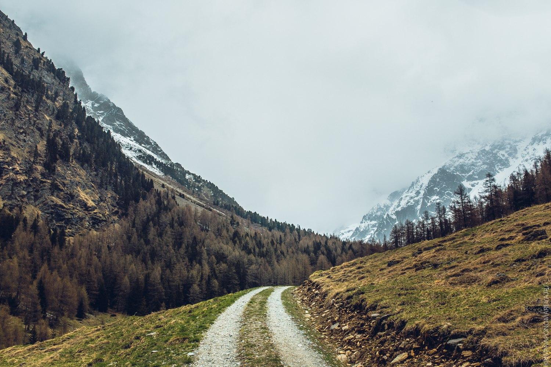 ємиграция Австрия Переехали: как жить в Австрии? 6Dmbw4dfwlU