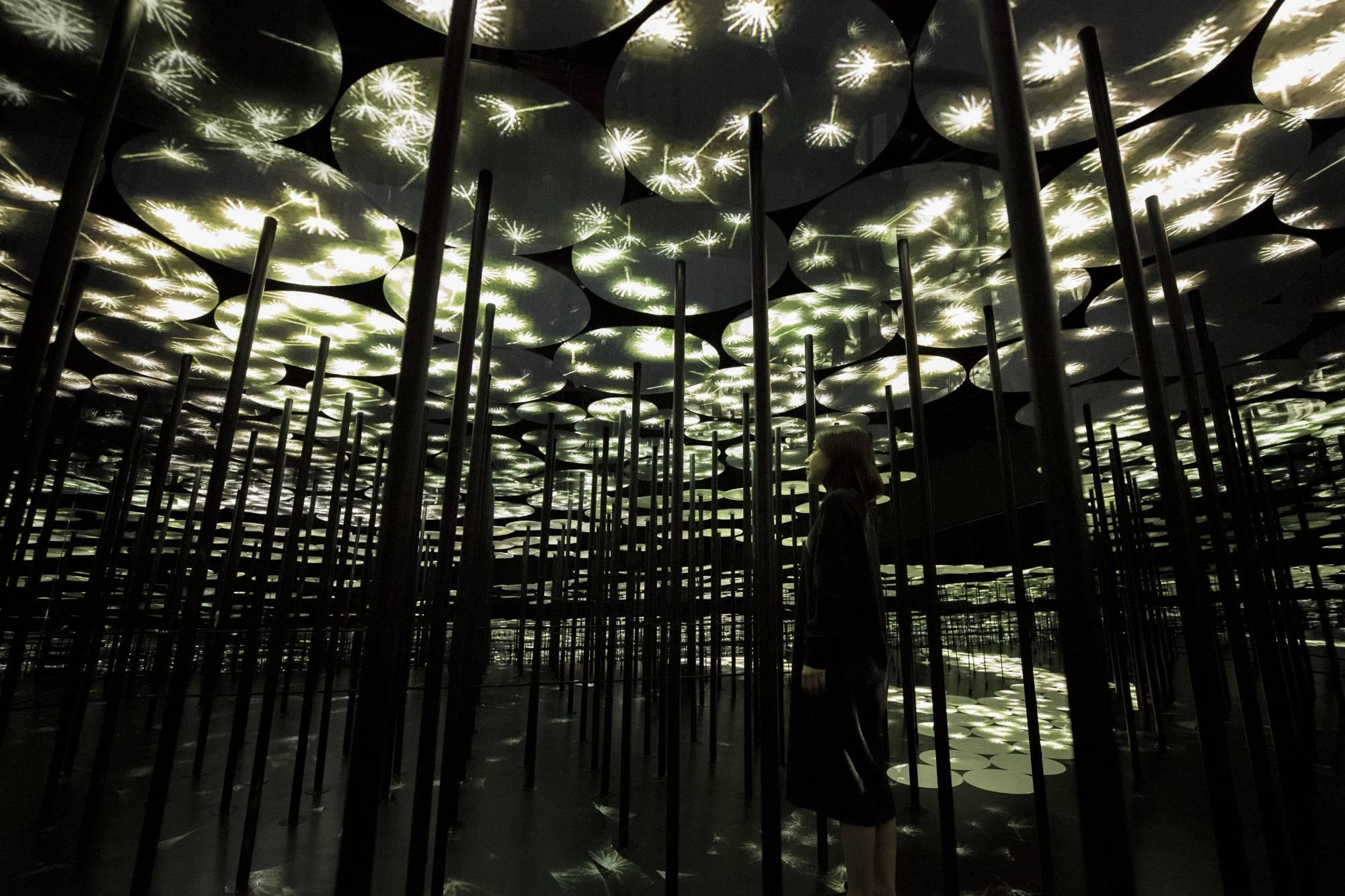 Токио Другая реальность: первый в мире Музей цифровых искусств в Токио 14903
