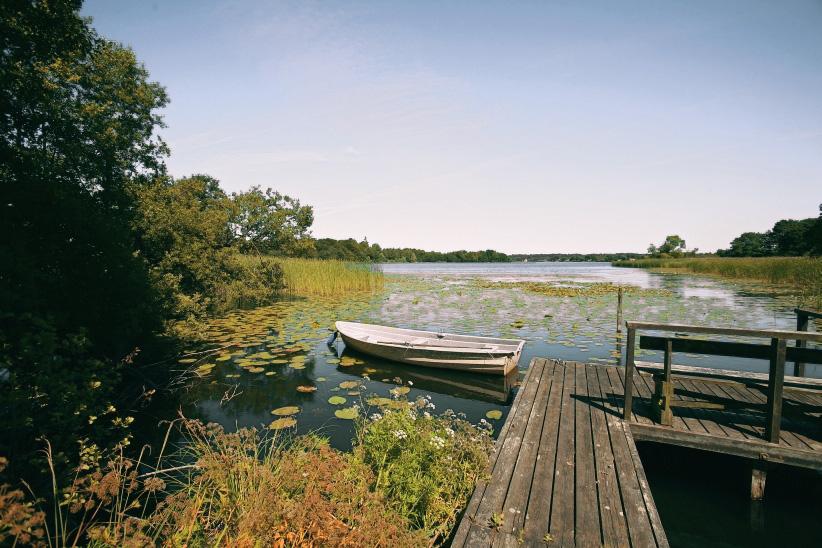 Место дня: новый национальный парк в Дании Место дня: новый национальный парк в Дании gallery IMG 3939
