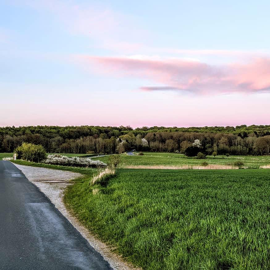 Место дня: новый национальный парк в Дании Место дня: новый национальный парк в Дании photo 2018 06 07 16 10 12