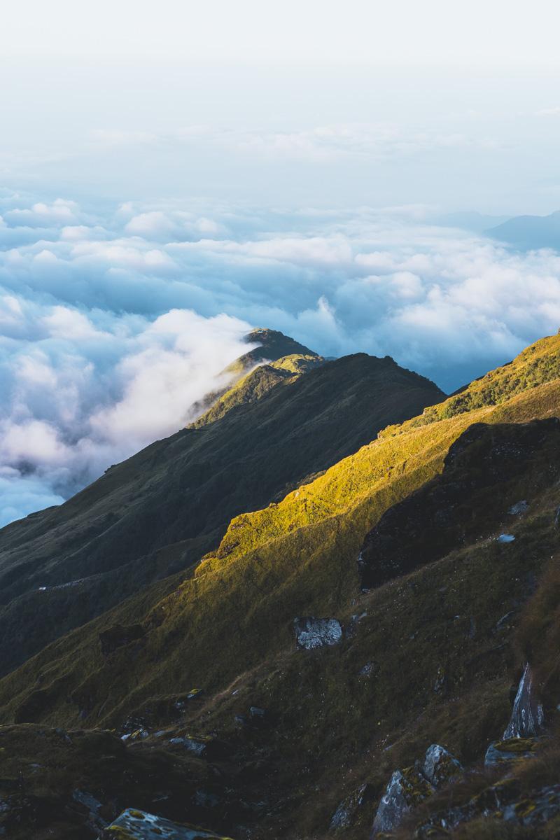 Опыты: месяц в Гималаях Опыты: месяц в Гималаях  MG 3705