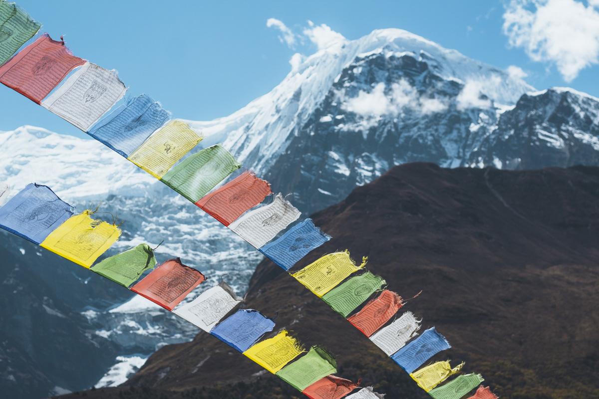 Опыты: месяц в Гималаях Опыты: месяц в Гималаях  MG 4230