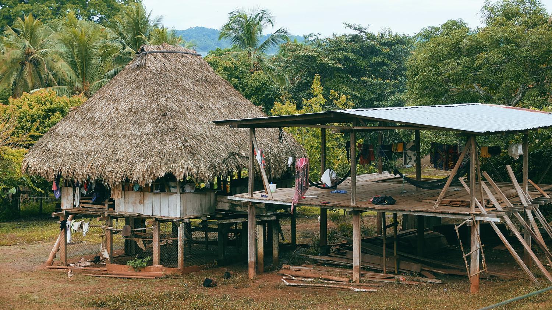 «Хочу домой» из джунглей Панамы «Хочу домой» из джунглей Панамы DSCF5618