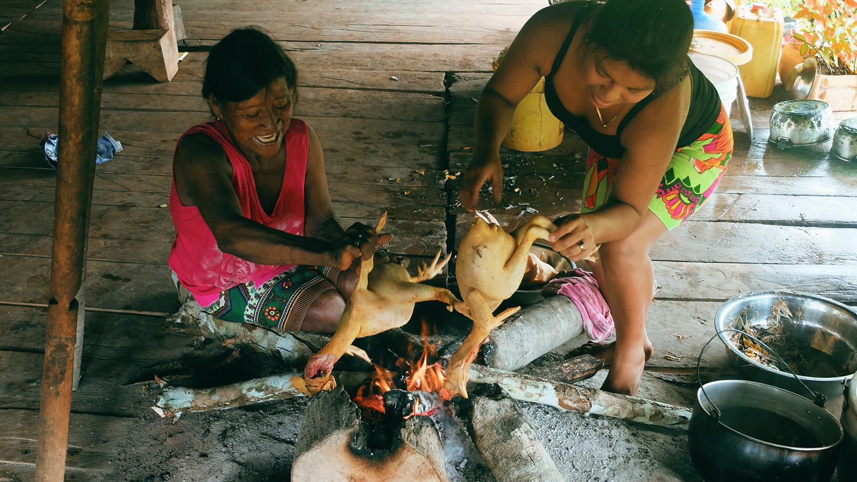 «Хочу домой» из джунглей Панамы «Хочу домой» из джунглей Панамы DSCF5654
