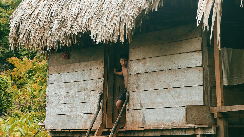 «Хочу домой» из джунглей Панамы «Хочу домой» из джунглей Панамы DSCF5663