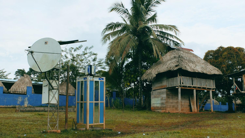 «Хочу домой» из джунглей Панамы «Хочу домой» из джунглей Панамы DSCF5850