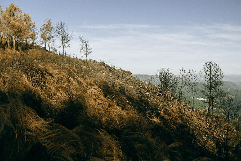 Место силы: горы Серра-да-Эштрела в Португалии Место силы: горы Серра-да-Эштрела в Португалии 16
