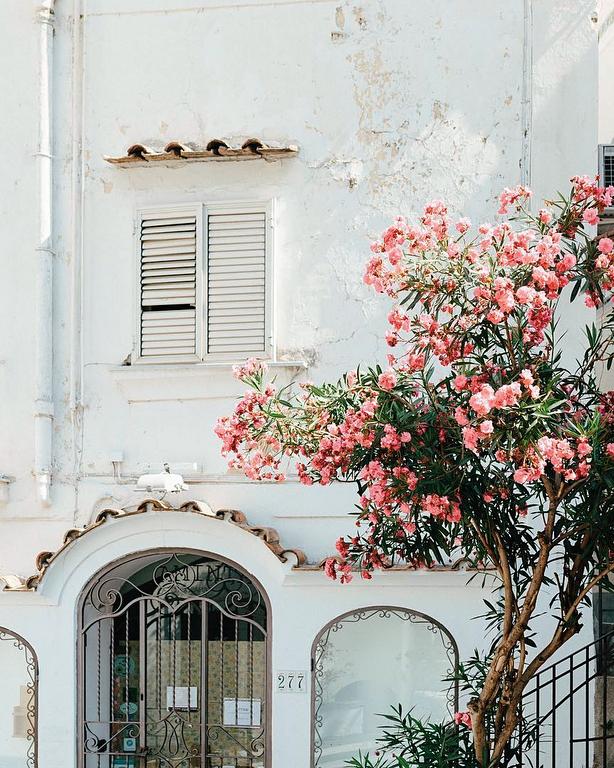 Пляжные столицы Италии 5
