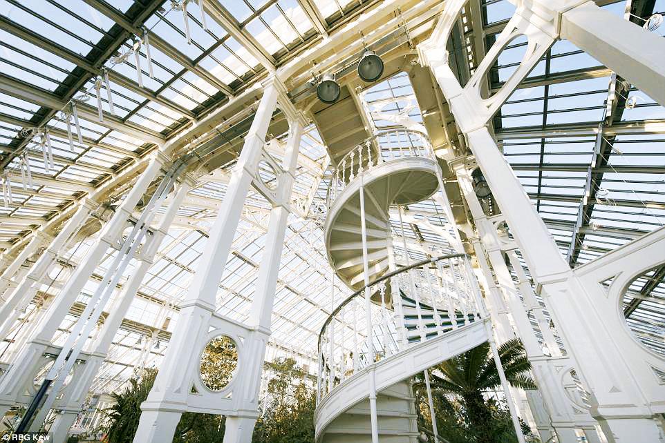 Фото дня: в Лондоне открылась викторианская оранжерея Фото дня: в Лондоне открылась викторианская оранжерея 15