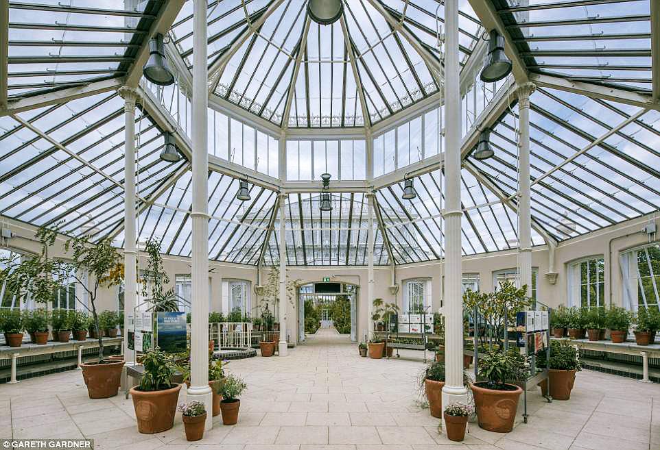 Фото дня: в Лондоне открылась викторианская оранжерея Фото дня: в Лондоне открылась викторианская оранжерея 4