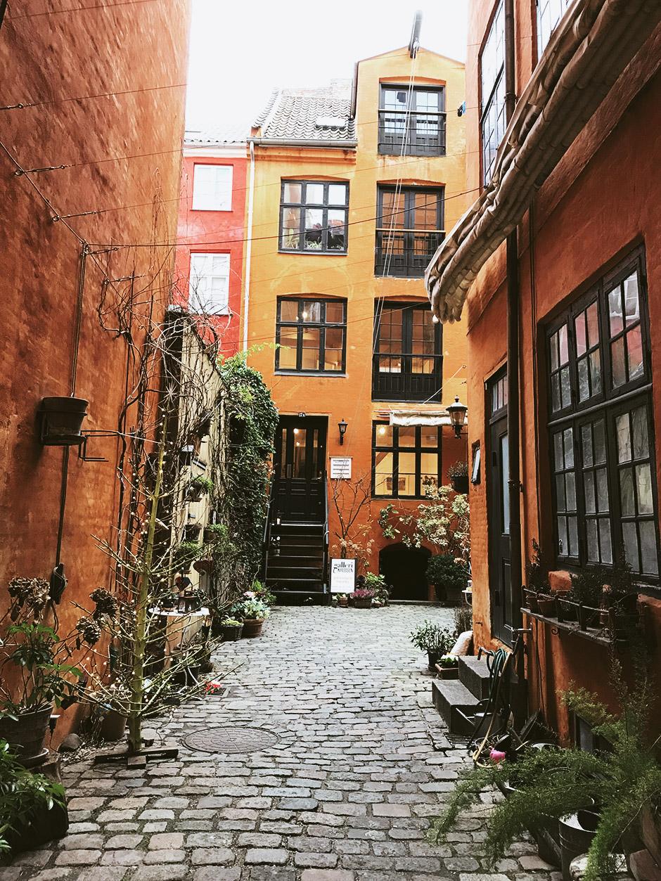 Личный опыт: Как устроена учеба в бизнес-школе Копенгагена Личный опыт: Как устроена учеба в бизнес-школе Копенгагена 9