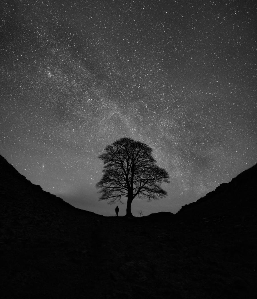 Лучшие астрономические фото года Лучшие астрономические фото года PS28383 Me 20versus 20the 20Galaxy 20 20 C2 A9 20mark 20 20mc 20neill