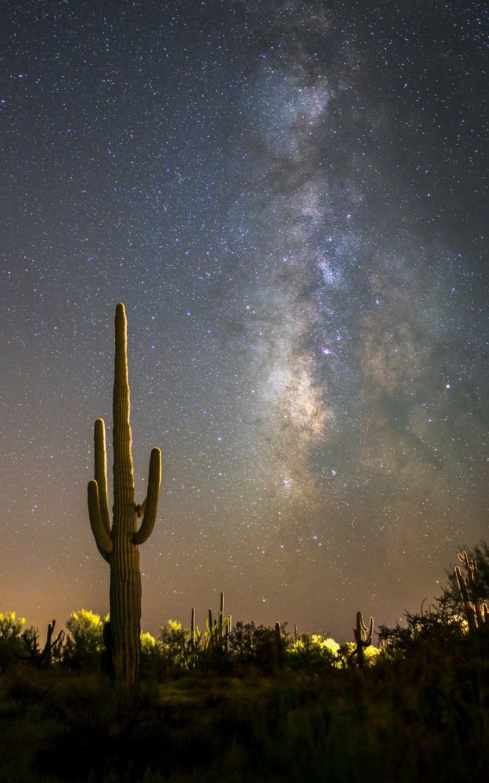 Лучшие астрономические фото года Лучшие астрономические фото года S35138 Illuminating 20Park 20Links 20 C2 A9 20Shawna 20Cadwell