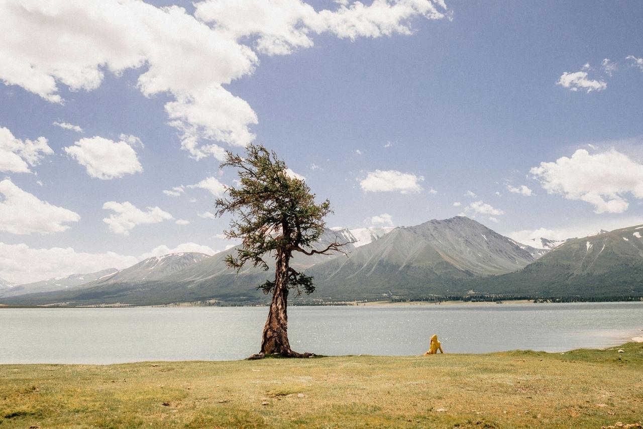 Едем в Монголию Едем в Монголию BOn7vPXnnoE
