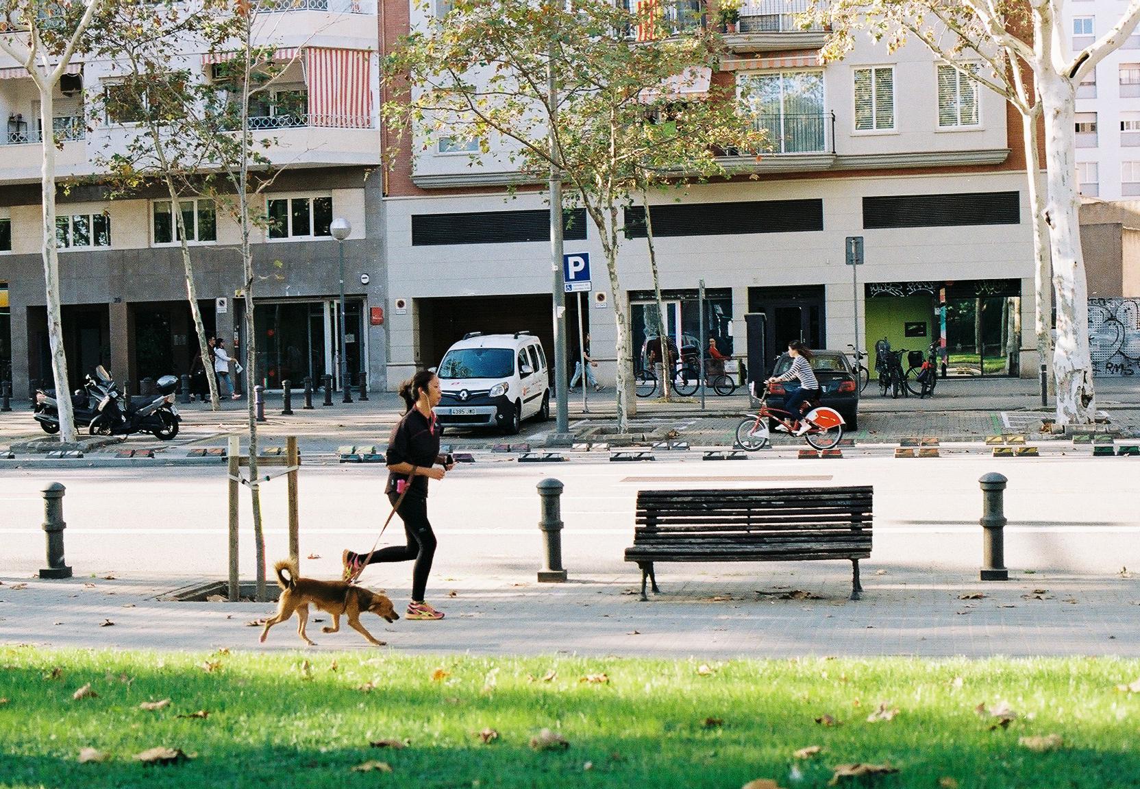 Барселона Барселона во всей красе CNV000001 20 3