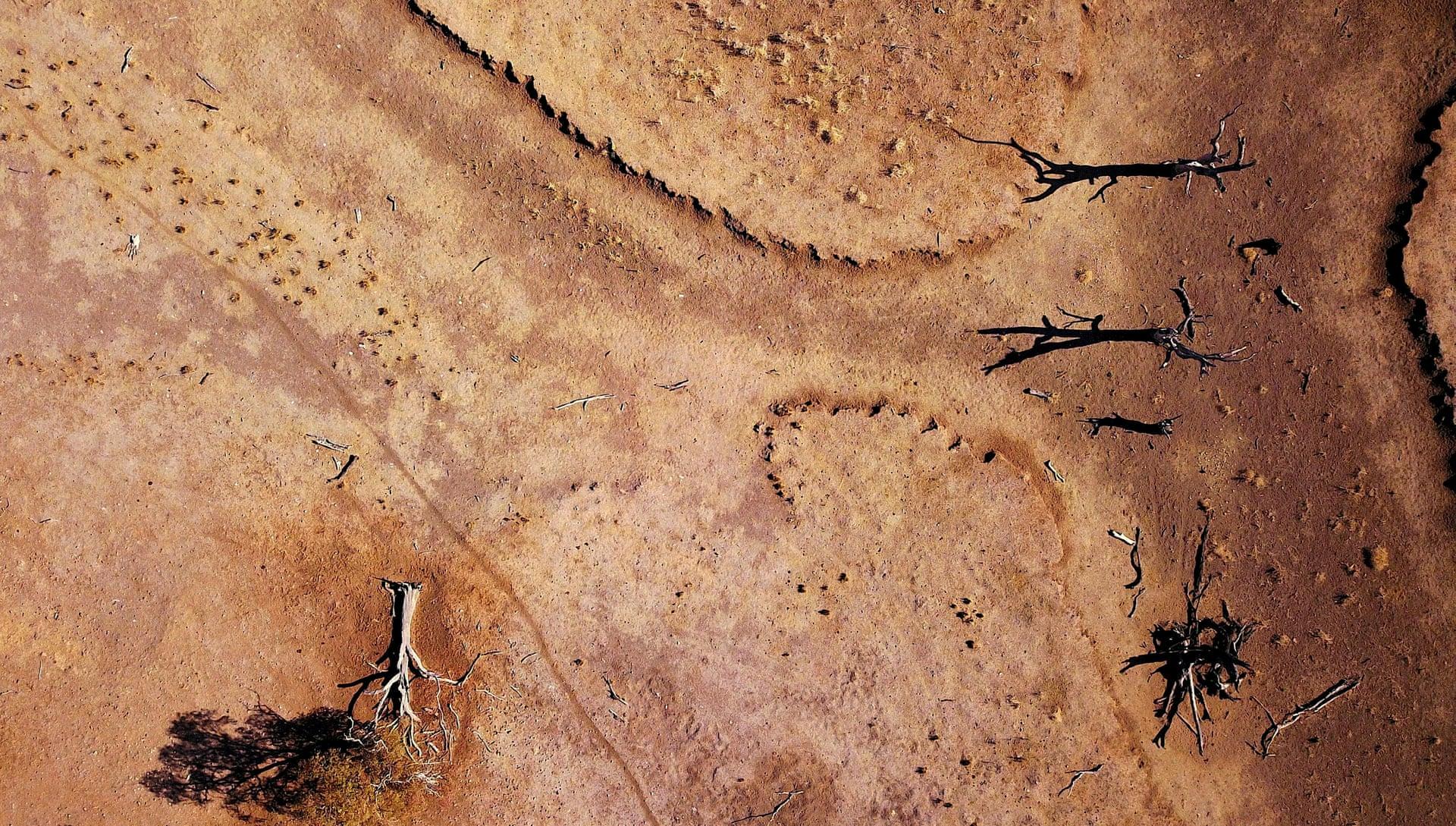 Фото дня: засуха в Австралии с высоты птичьего полета Фото дня: засуха в Австралии с высоты птичьего полета 3500 20 15