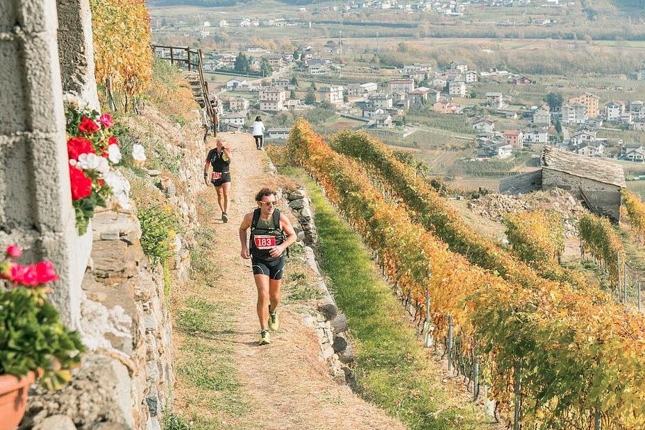 Drink and Run: винные забеги Европы|В дороге - сайт о путешествиях и приключениях